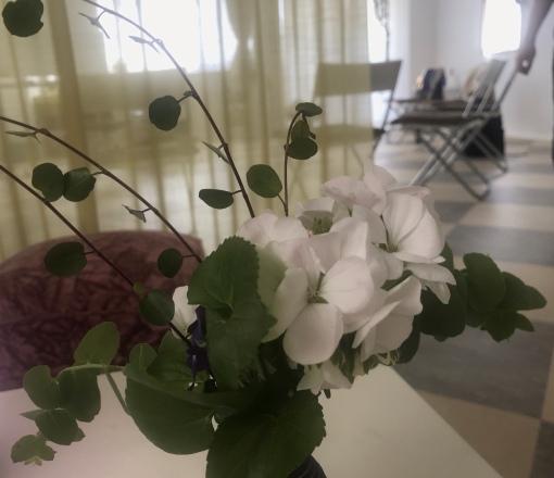 5月青空禅塾2019伊東充隆@プロトマニア